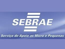 SEBRAE/SC oferece consultoria online e gratuita às micro e pequenas empresas